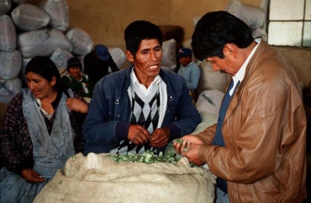 Auf dem legalen Cocamarkt von La Paz
