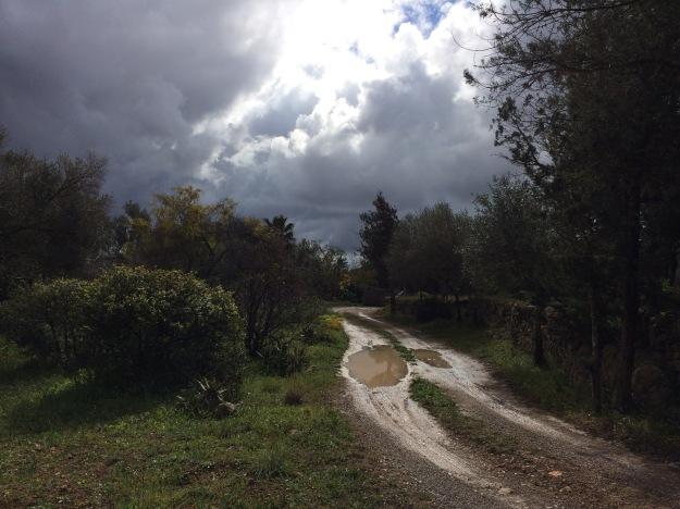 Auf Ibiza ist Regen Mangelware
