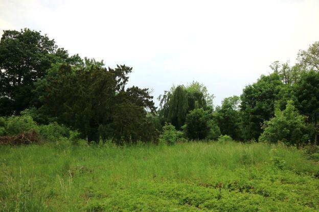 ursprüngliche Landschaft