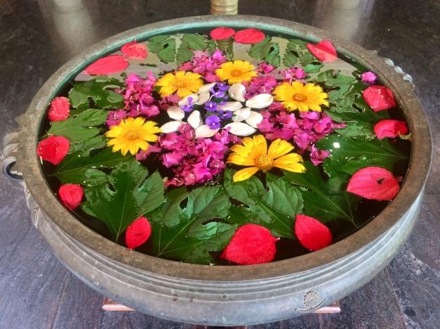 Blütenpracht in Indien