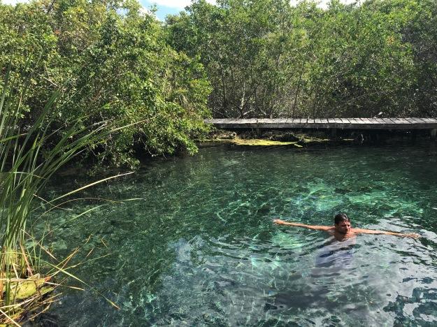 Ausflug zu einem Süßwassersse