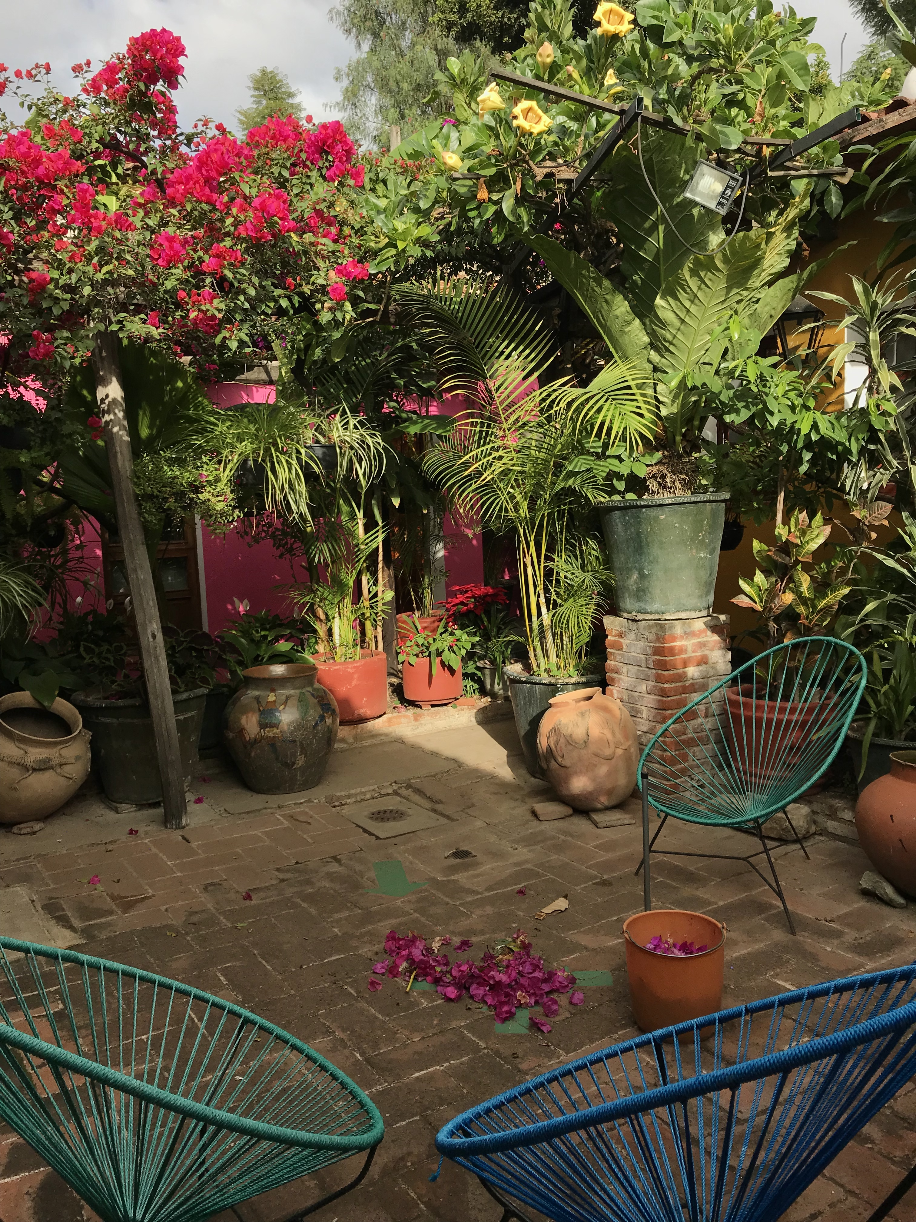 Hotel Las Golondrinas, Oaxaca