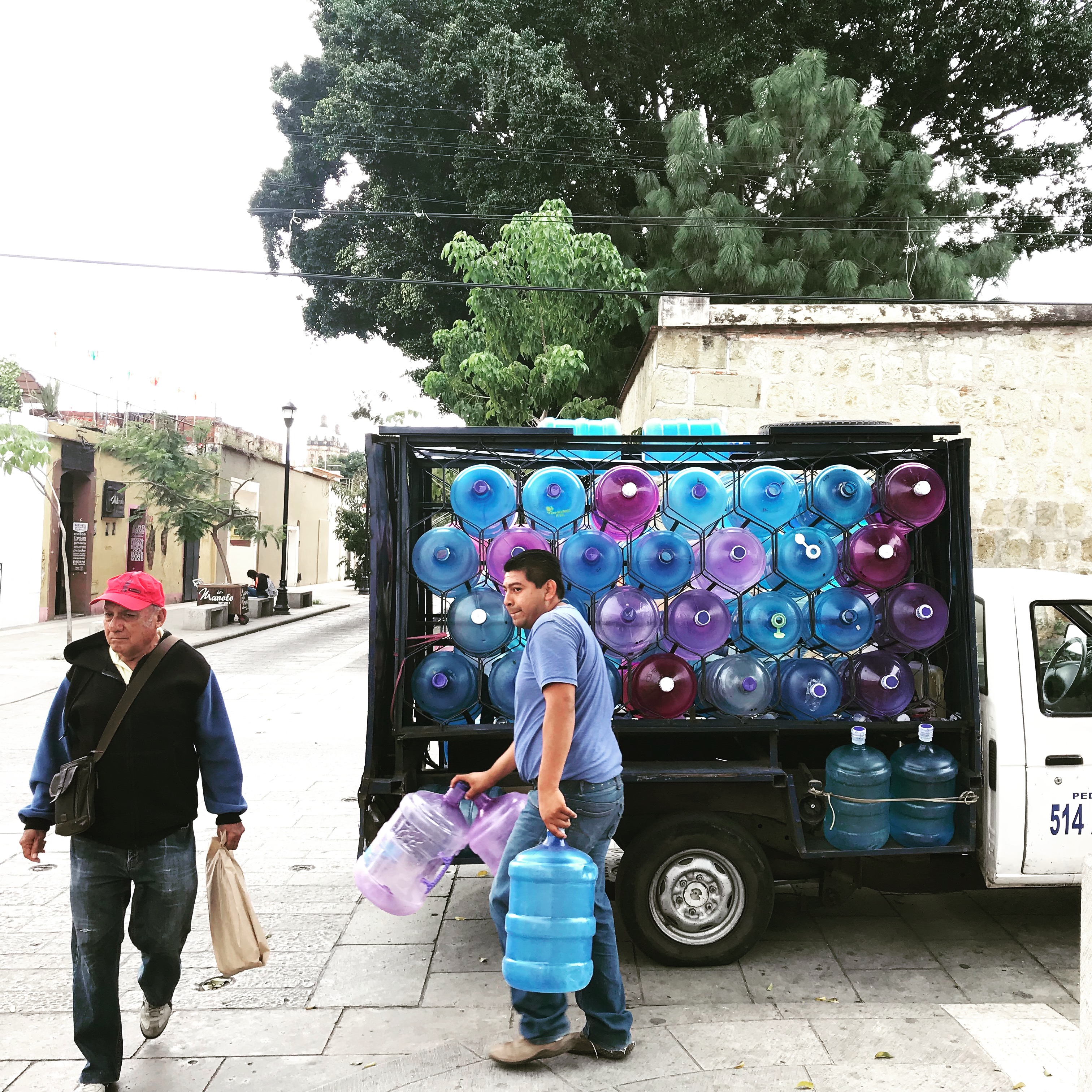 Wassermann in Oaxaca